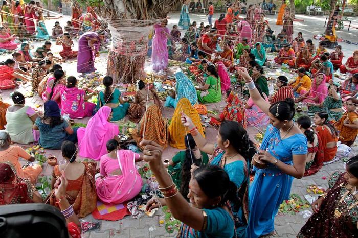 Индийские фестивали: женщины плетут нитки жизни вокруг баньяна. Фото Айита Соланки