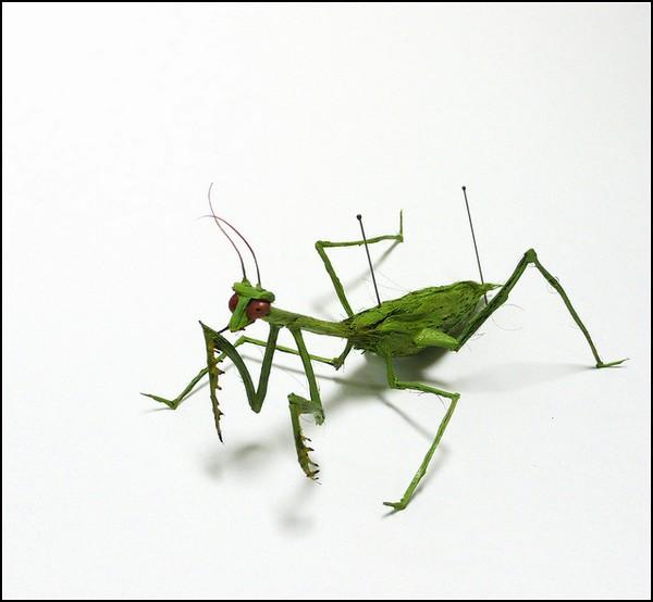 Раскраска насекомые жуки