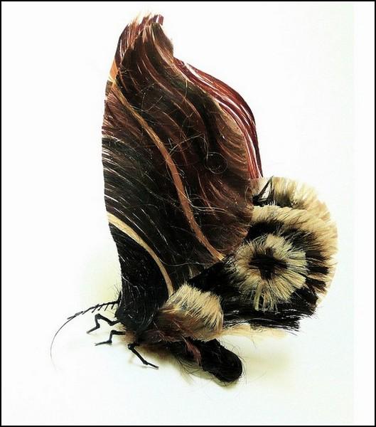 Необычные насекомые Adrienne Antonson: бабочка и прическа