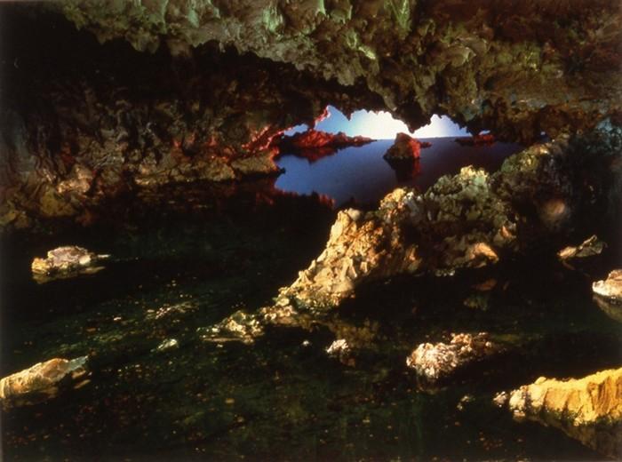 Самые красивые аквариумы: между живописью и фотографией