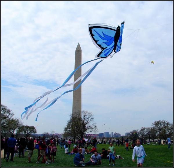 Змеиный полет. Фестиваль воздушных змеев в Вашингтоне