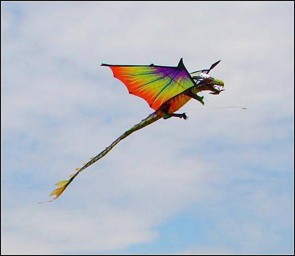 Змеиный полет: фестиваль воздушных змеев в столице США