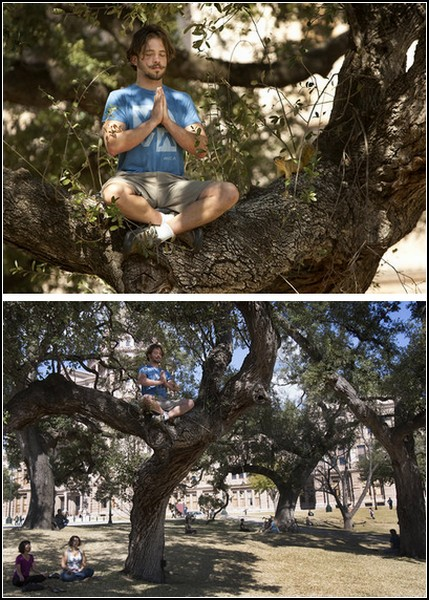 Практика медитации на деревьях