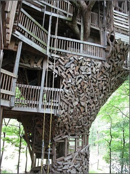 Самый большой домик на дереве в мире