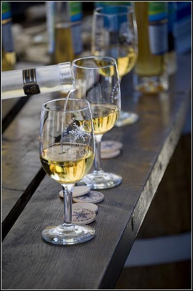 Фестиваль вина Ниагары