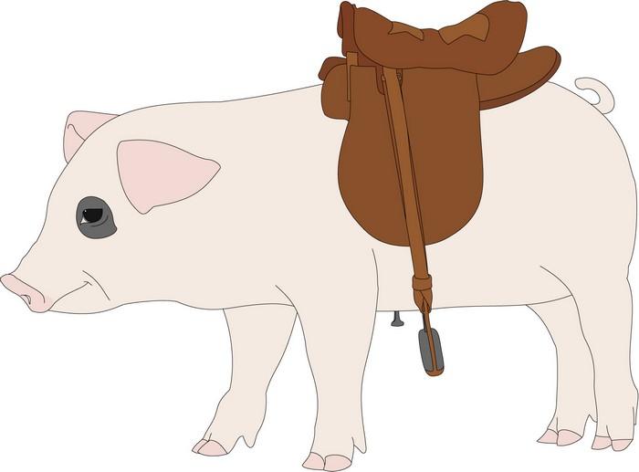 Свинья для родео: принципиальная схема