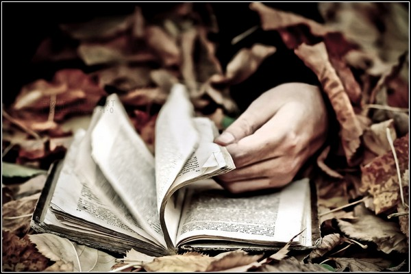 Искусство и книга. Осенний эскапизм