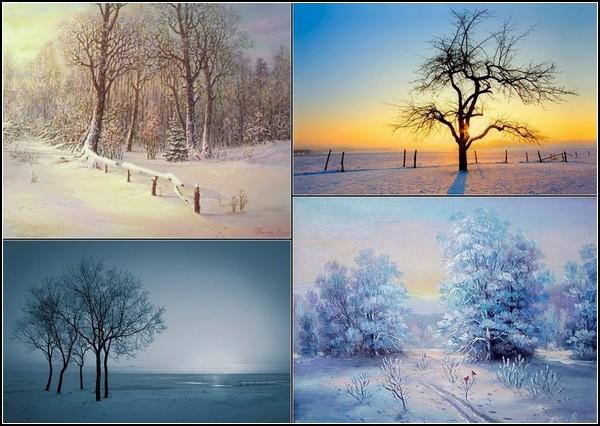 Зима и солнце: фотоподборка
