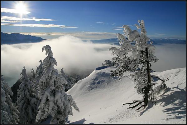 Зима и солнце: день чудесный