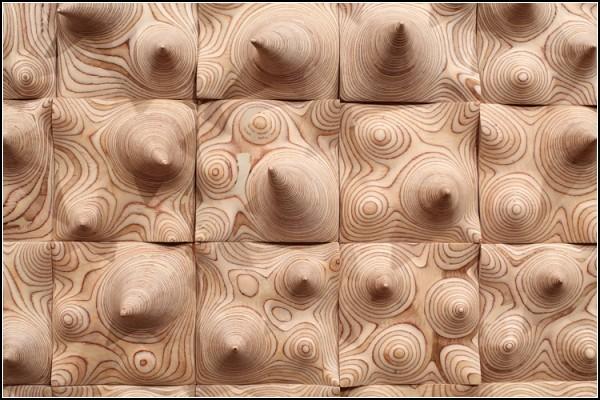 Дерево-арт: математически-древесная гармония Cha Jong-Rye. Фото 3