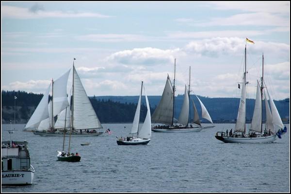 Деревянные яхты на фестивале в Австралии