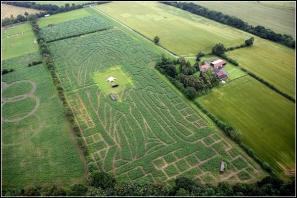 Кукурузное поле, гигантский лабиринт и ландшафтная живопись