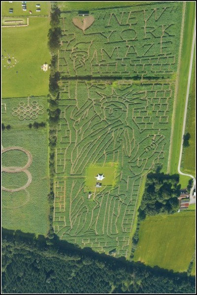 Кукурузное поле и Свобода