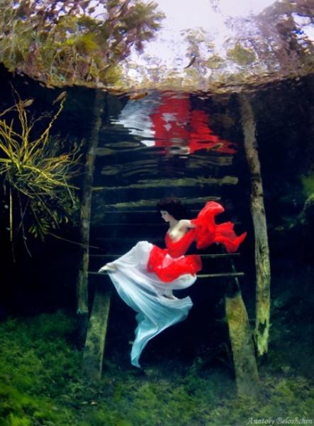 Подводная фотосъемка Анатолия Белощина