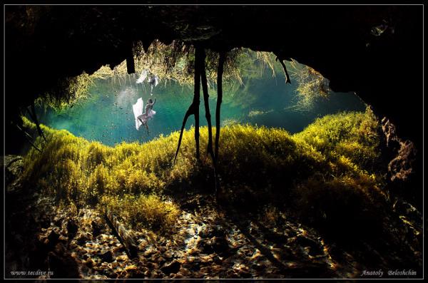 """""""NUDE & FASHION"""": подводная съемка от Анатолия Белощина"""