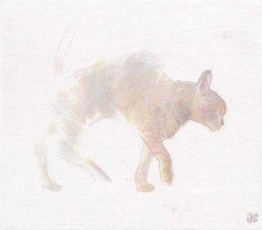 Moki Mioke рисует и акварелью