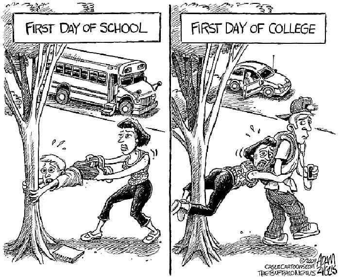Карикатуры о начале нового учебного года: скоро в колледж