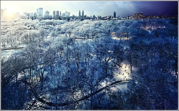Удивительные фотографии Нью-Йорка: Центральный парк