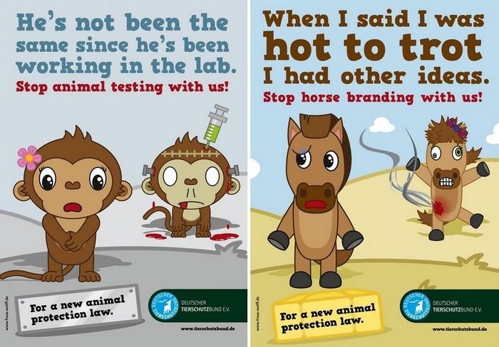 Не тренируйся на кошках: оригинальная реклама в защиту прав животных