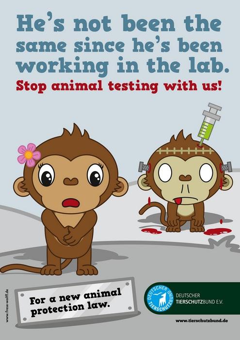 Оригинальная реклама в защиту прав животных: «Он изменился, с тех пор как попал в лабораторию»