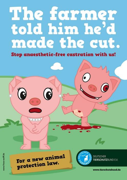 Оригинальная реклама в защиту прав животных: «Фермер сказал, что он его почикал»