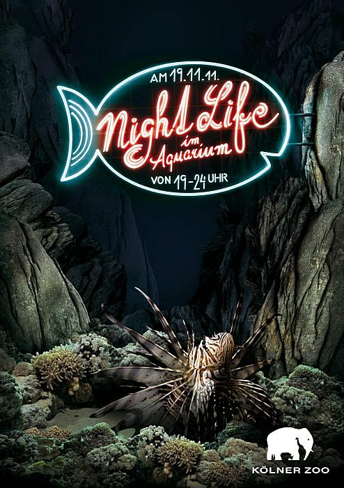 Ночная жизнь - не только мероприятия в клубах: оригинальная реклама Кёльнского зоопарка