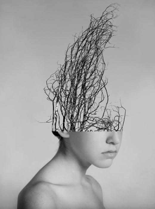Ветвящиеся мысли: фотоколлажи Александры Беллиссимо
