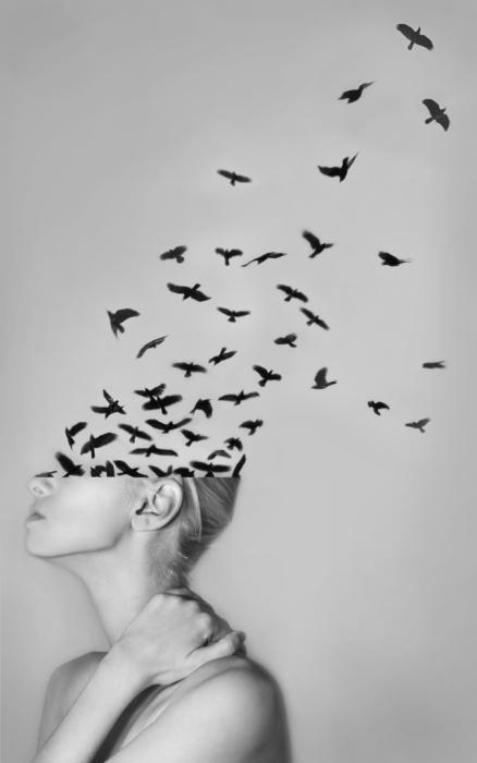Мысли, свободные как птицы: фотоколлажи Александры Беллиссимо