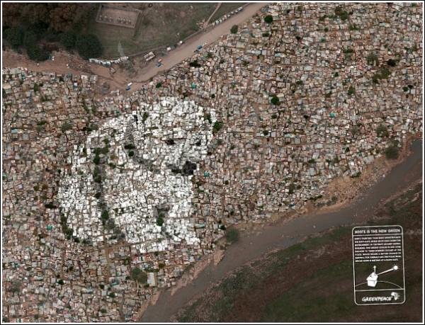 Действительно белый медведь: зеленая реклама из ЮАР