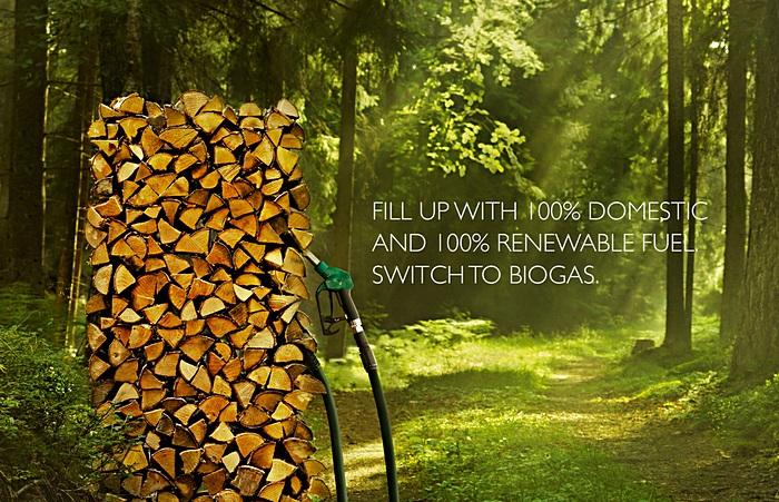 Заправка дровами: зеленая реклама биотоплива