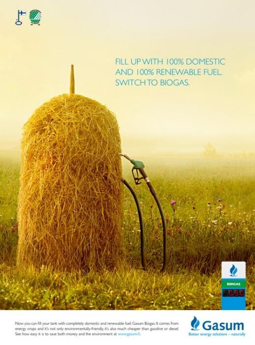 Пистолет в стогу сена: зеленая реклама биотоплива