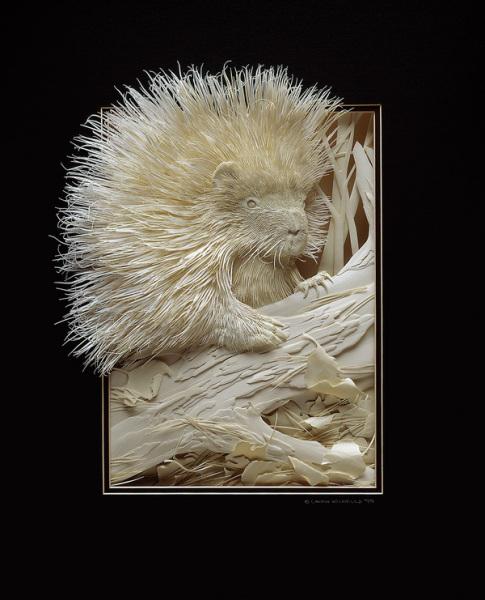 Бумажные животные Кэлвина Николлса: дикобраз