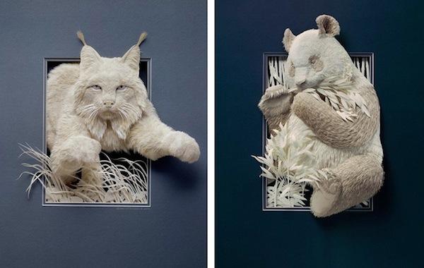 Бумажные животные Кэлвина Николлса: рысь и коала