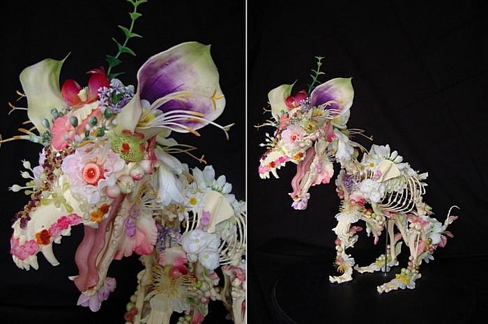 Кости под белыми и розовыми бутонами: контрастные композиции