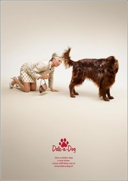 Креативная реклама собачьего приюта: обнюхайте пса, леди!