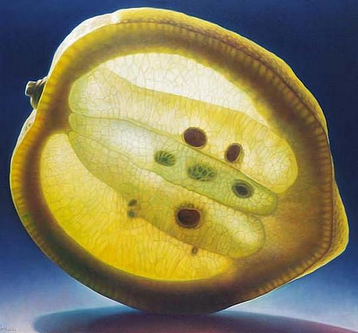 Светящийся лимон: масляная живопись Денниса Войткевича