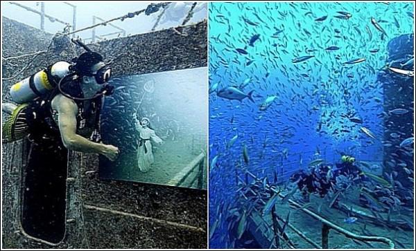 Выставка на затонувшем корабле: подводные фотографии Андреаса Франке