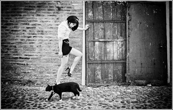 Черно-белые снимки Стефано Джакомини: кошки так похожи на людей