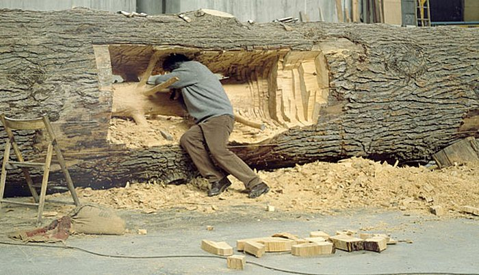 Джузеппе Пеноне во чреве дерева