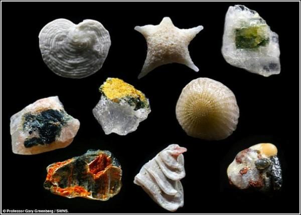 Всего лишь песчинки: завораживающие фотографии Гэри Гринберга