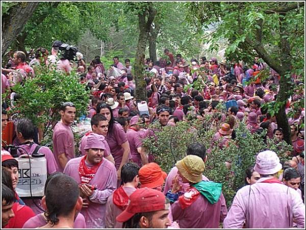 Праздник вина в Испании: все в розово-фиолетовом