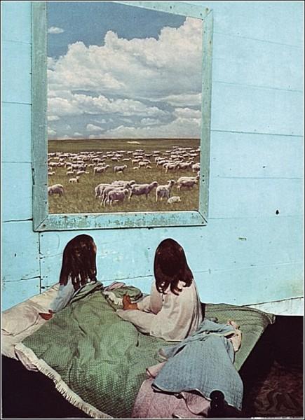О, дивный старый мир вырезок из журналов: искусство считать овец