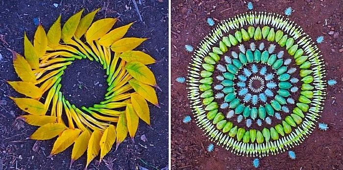 Мандалы своими руками: композиции из желтых листьев и овощей