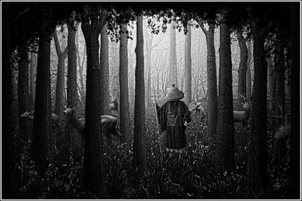 Путь к просветлению: черно-белые фотоработы Ника Педерсена