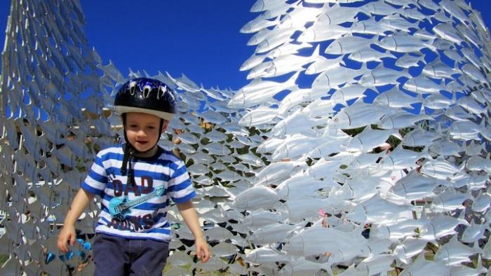 Косяк рыб - любимец детей