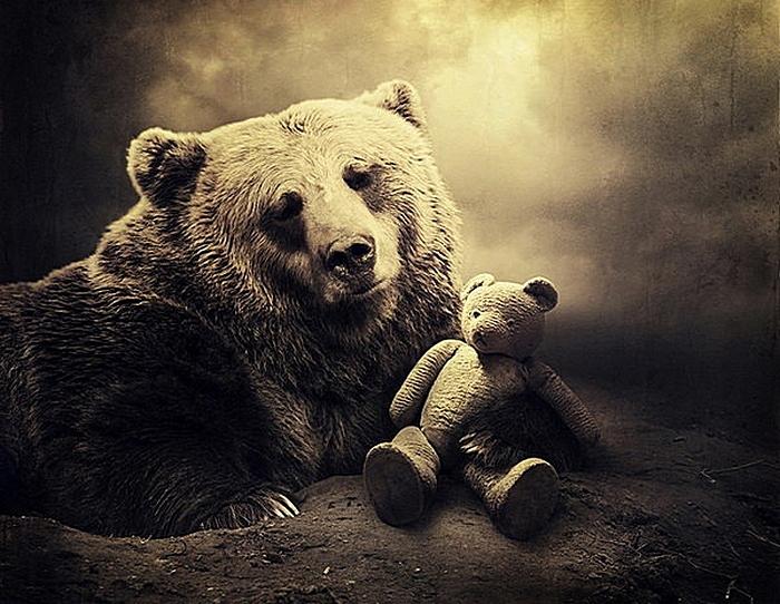 Кукла вуду для медведя: креативные фотографии и коллажи Саролты Бан