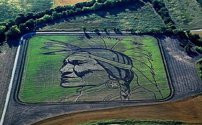 Рисунки на полях: монументальное агротворчество Стэна Херда