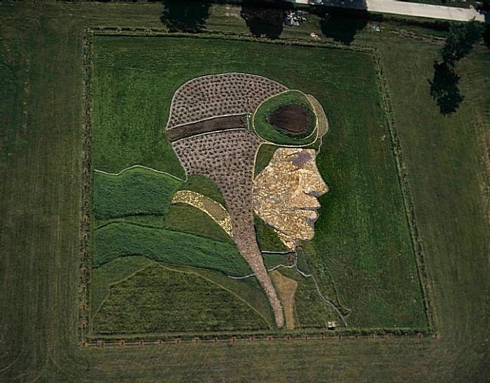 Рисунки на полях: авиатор