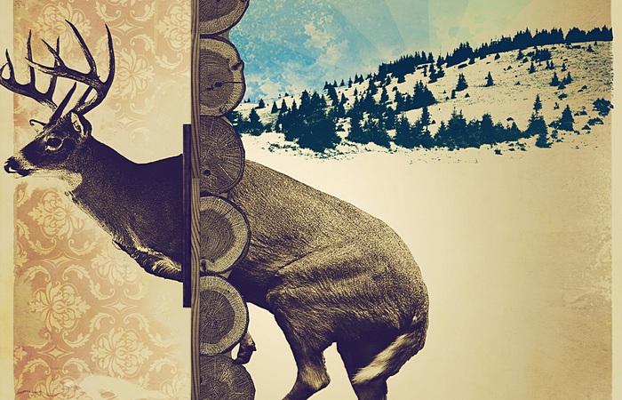 Не застревайте дома - оленем станете: магазин инвентаря для вылазок предупреждает
