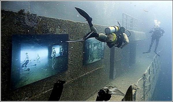 Экспозиция в действии: подводные фотографии Андреаса Франке